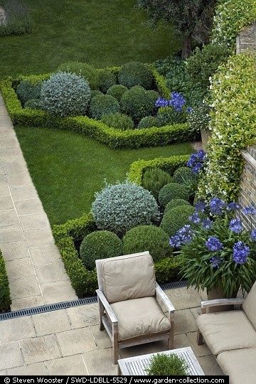 Hedges and topiary   Louise del Balzo Garden Design by jenny