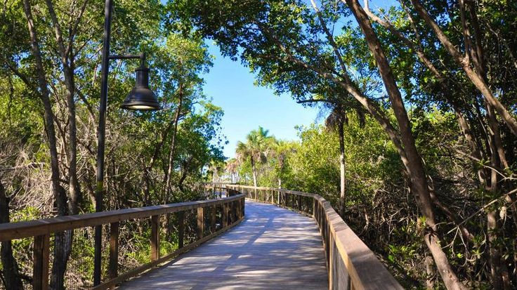 In Naples, locals know and love the Gordon River Greenway, an elevated nature trail and one of the last unspoiled areas in the region. Weaving through the mangroves, the Greenway features paved pathways, canoe and kayak launches, scenic overlooks for wildlife viewing, and a hidden entrance near the Naples Zoo and Conservancy of Southwest Florida.