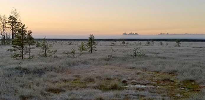Valkmusan kansallispuisto - Luontoon.fi