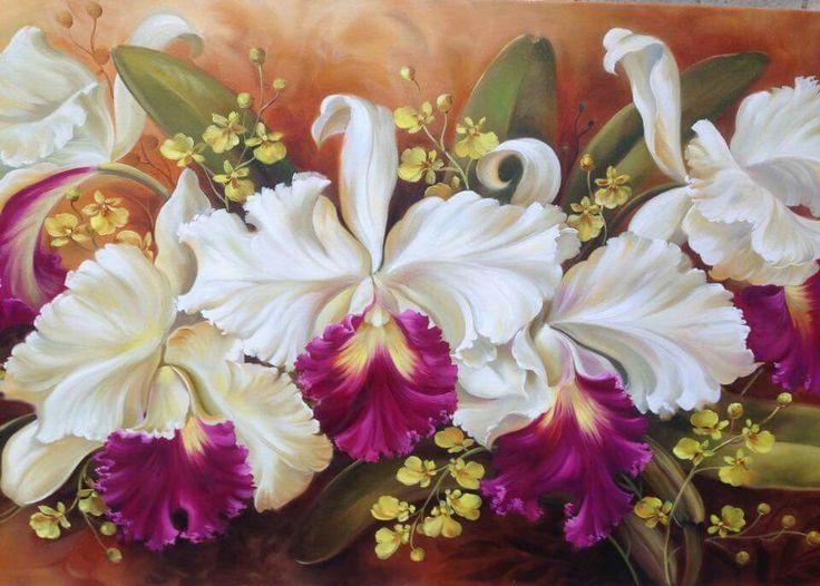 Orquídeas - Douglas Frasquetti