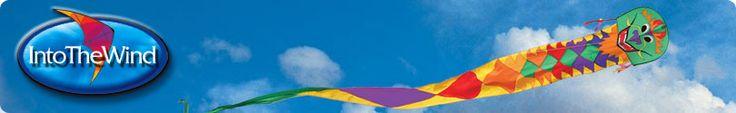 19 foot delta kite