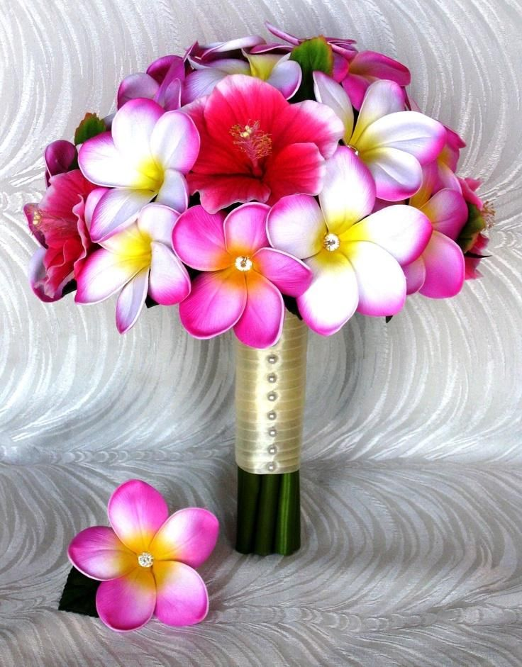 25 Best Ideas About Plumeria Bouquet On Pinterest Plumeria Flowers Narcis