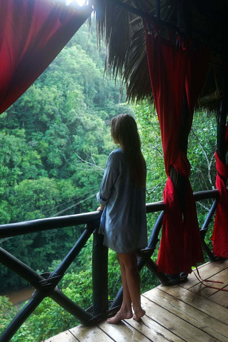 Wake up with the jungle at the Dominican Tree House Village. Samana, Dominican Republic.