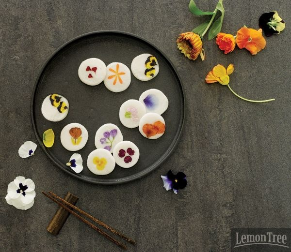 ddeok/tteok (떡) with edible flowers (화전)