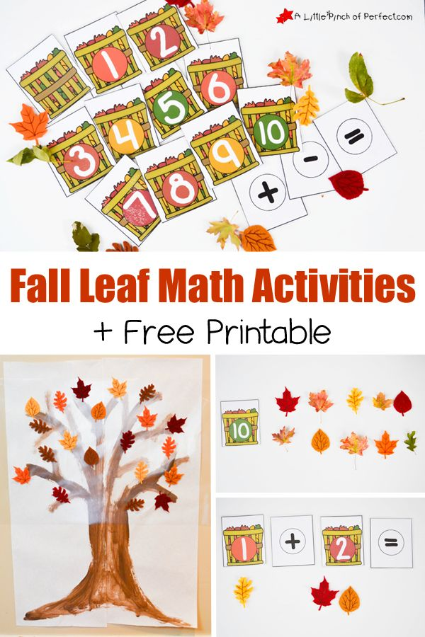 Fall Leaf Math Activities and Free Printable for Hands on Learning -