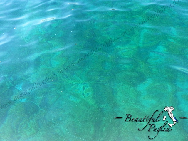 #Puglia - Summer by Beautiful Puglia  Find out more #photos of Puglia here ;) http://www.flickr.com/groups/pugliaevents/pool/#