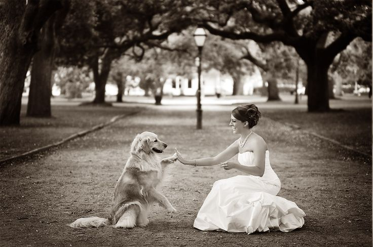 Wish my dog was still alilve so I could get this shot with her! I can't wait to do this with Kodi though