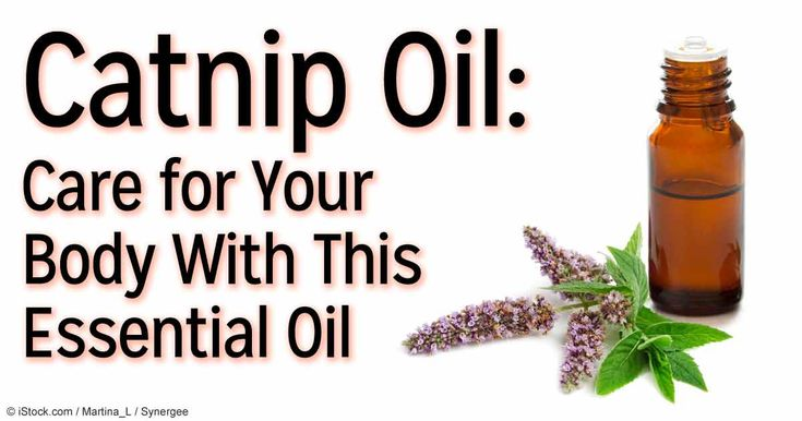 Catnip is usually reserved for your feline friends, but you can also utilize this essential oil — read more about catnip oil's uses and benefits. http://articles.mercola.com/herbal-oils/catnip-oil.aspx