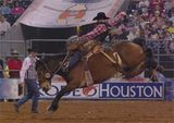 2014 Houston Livestock Show and Rodeo