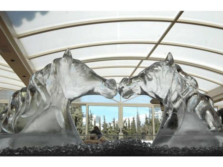 Start your own business in your country in the Ice Sculpture Industry! We offer you the chance to start business in your country, by providing you with Ice Gallery's unique know-how, equipment and special reusable molds.