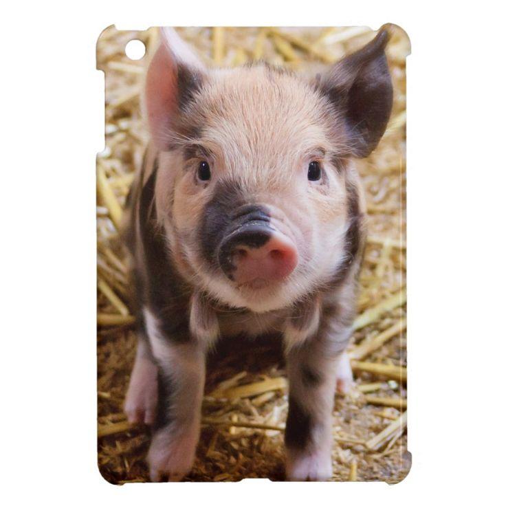 Piglet Case For The Ipad Mini Zazzle Com Cute Animals Cute Baby Animals Cute Pigs