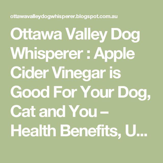 Ottawa Valley Dog Whisperer : Apple Cider Vinegar is Good For Your Dog, Cat and You – Health Benefits, Uses, Dosage