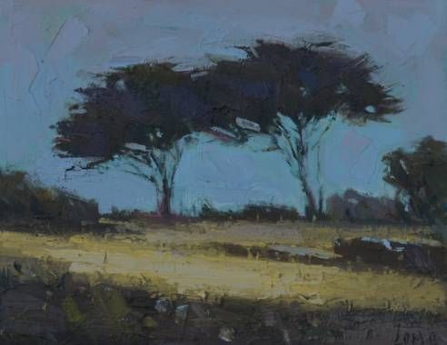 Rational Expressions | Hilltop Trees