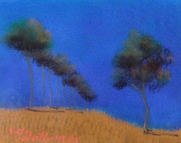 Pieter van der Westhuizen Trees at Night