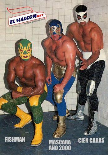 Los Brazos Luchadores