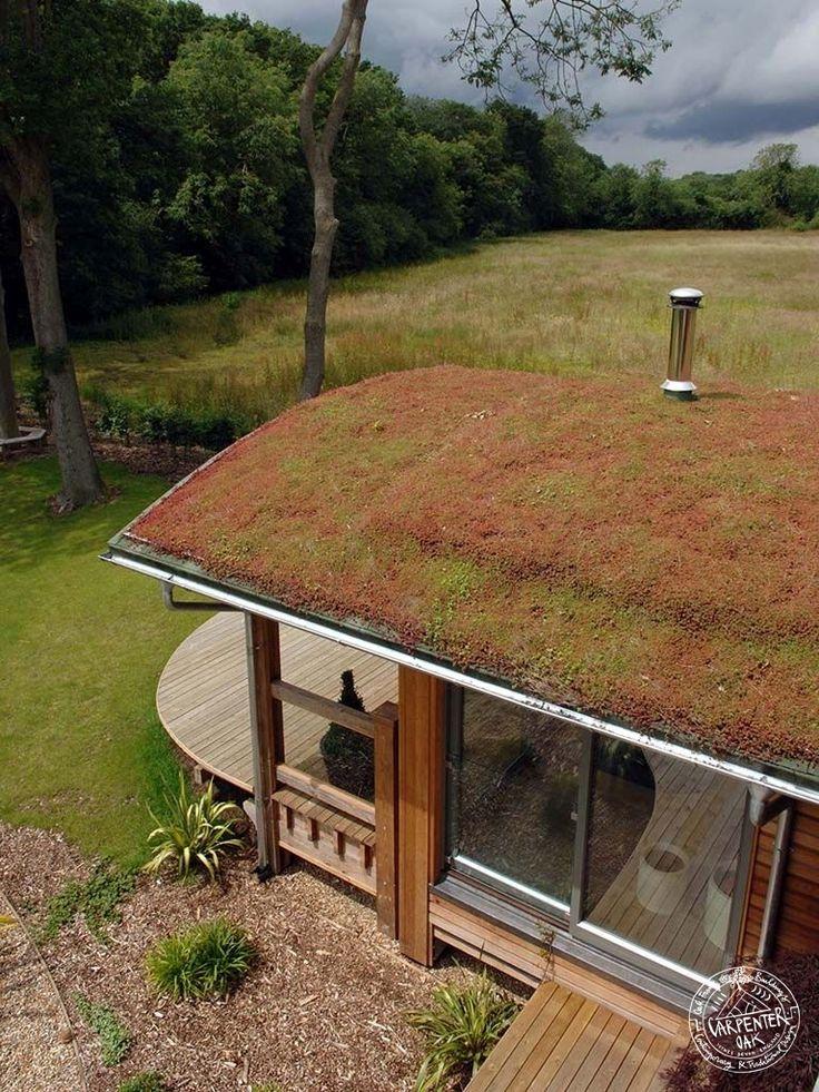 moss-and-zinc-roof-detail-casestudy-contemporary-douglasfir-framed-newbuild-norfolk.jpg (768×1024)