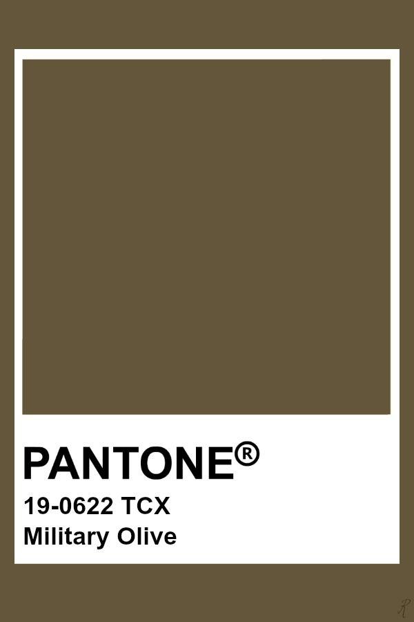 Pantone Military Olive | Pantone color, Pantone colour palettes, Brown  pantone