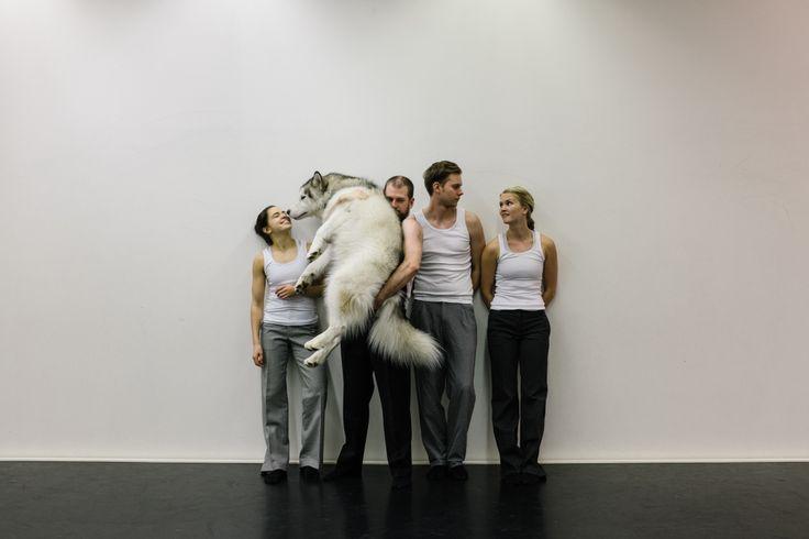 Wolfpack by Kinetic Orchestra/Jarkko Mandelin. Photo by: Hanna Käyhkö