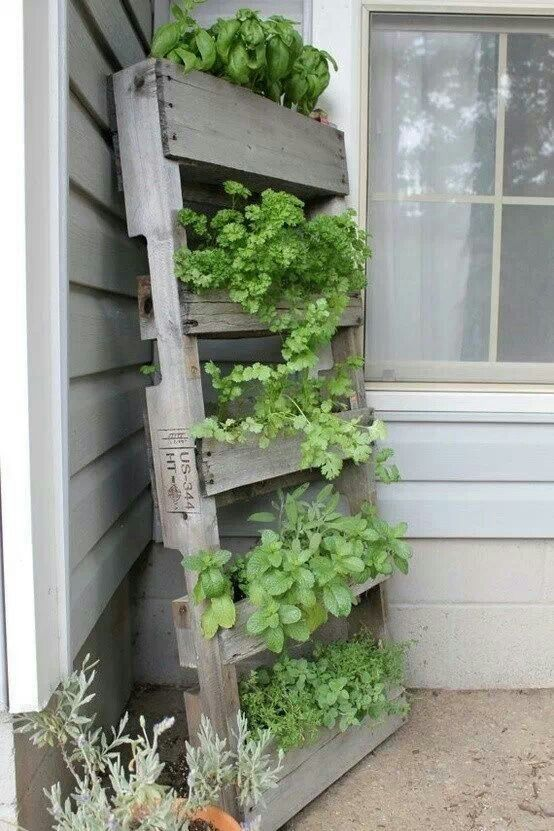 DIY. RECYCLED PALLET to vertical garden =====================