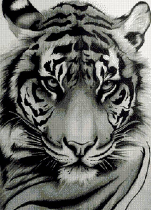 """Broderie conduite """"Tiger"""" - Plans auteur «Annushka100» - Point de Croix"""