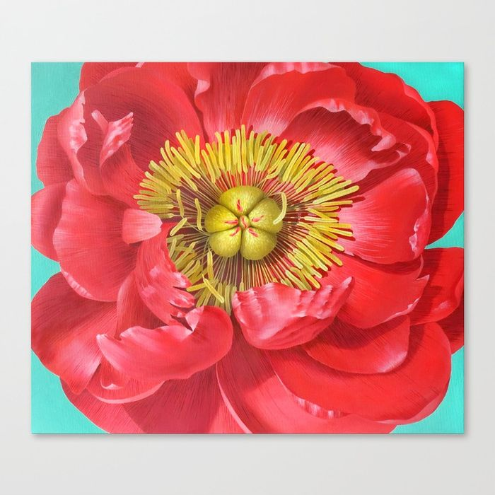 oil on canvas painting of red peony rose
