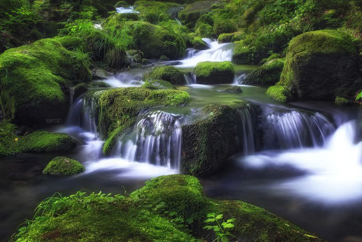 Photo Sangdong Valley by Tony Lee on 500px