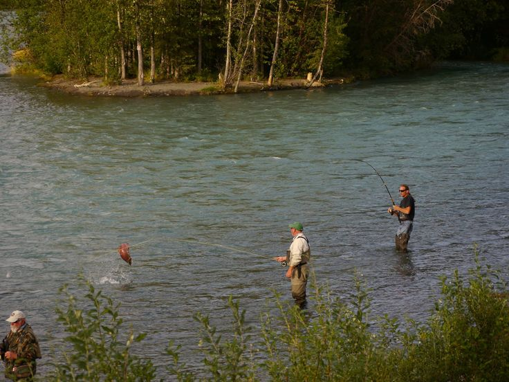 17 best images about gwin 39 s lodge kenai peninsula for Russian river fishing