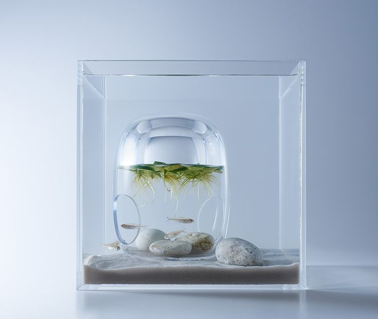 WATERSCAPE 1 - MISAWA DESIGN INSTITUTE | 三澤デザイン研究室 | 三澤 遥