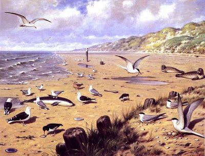 """Schoolplaat """"Aan het strand"""" van M.A. Koekoek"""