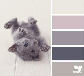 soft grayish purple color palette