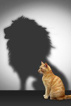 Nadie nace siendo valiente. Al igual que cuando fortalecemos un músculo, escoger enfrentar los desafíos de manera frontal formará nuestra valentía y nos hará más fuertes con el tiempo. La valentía ocurre no en la ausencia de temor sino en estar completamente asustado y escoger seguir delante de todos modos.