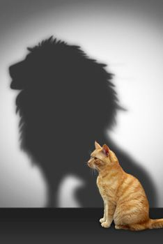 www.wisbar.org SiteCollectionImages WisconsinLawyer 2014 02 succession-planning-cat-lion-shadow_234x350.jpg