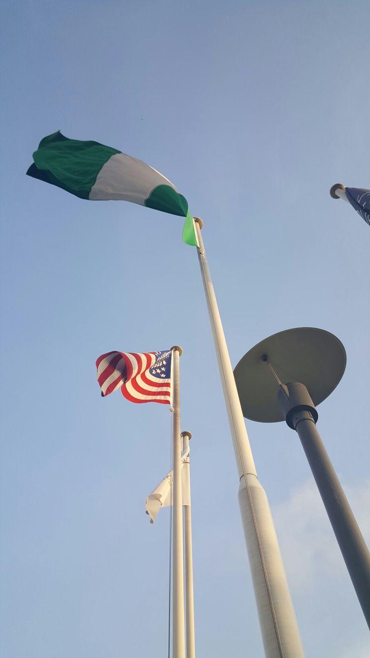 best 25 nigerian flag ideas on pinterest nigeria flag nigeria