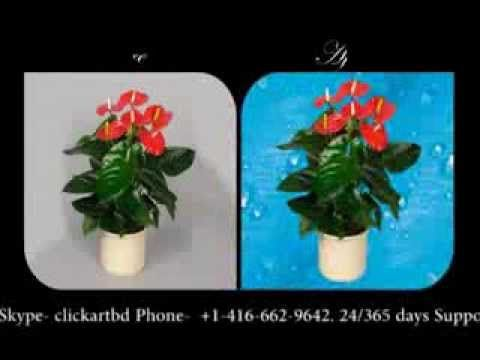 ClickArt Bd High End Photo #Retouching Service provider based Canada. For High Quality #ClippingPath, #BackgroundRemove, Cut Out, Vector Mask when will be Needed Contact with Us 'marketing.clickartbd@gmail.com' or 'info@clickartbd.ca' Skype- clickartbd Phone- +1-416-662-9642. 24/365 days Support for Our Valuable Clients.