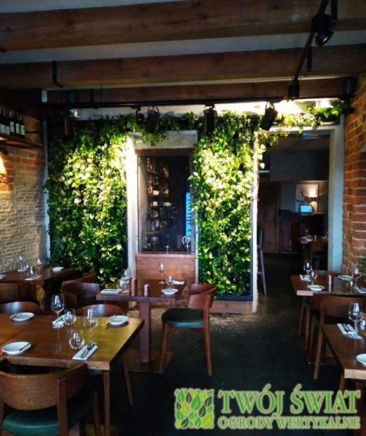 Zielona ściana w restauracji.