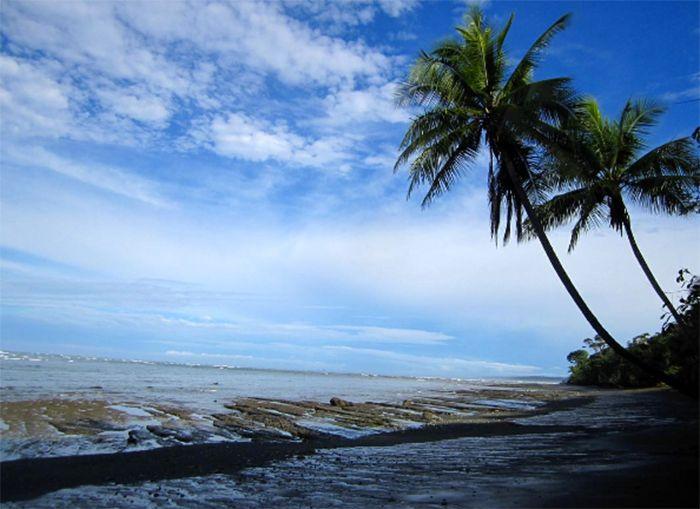 Costa Rica Dschungeltour – von paradiesischen Stränden & wilden Tieren