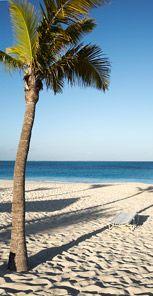Turquoise (Turks & Caicos)