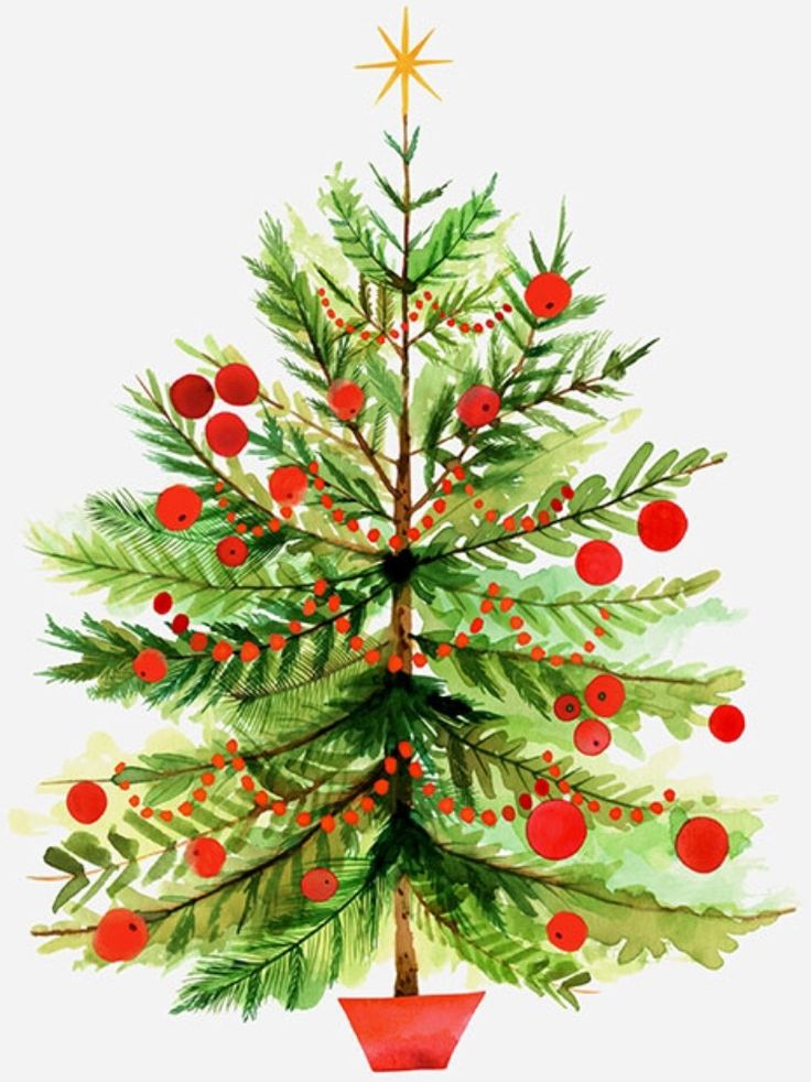 Christmas tree illustration by Margaret Berg