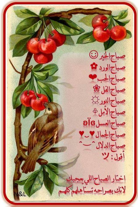 صباح الخير صباح الورد صباح الحب صباح الفل صباح النور صباح ...