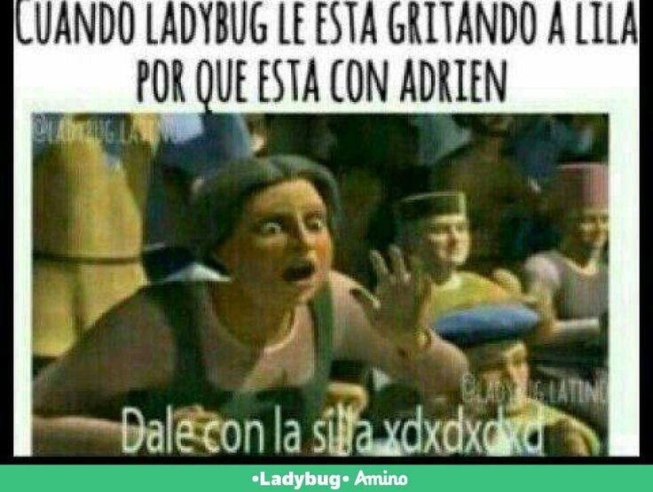 Matala Ladybug