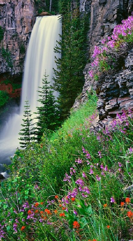Tumalo Falls ~ Deschutes National Forest ~ 12 miles west of Bend, Oregon • Mike Putnam Photography