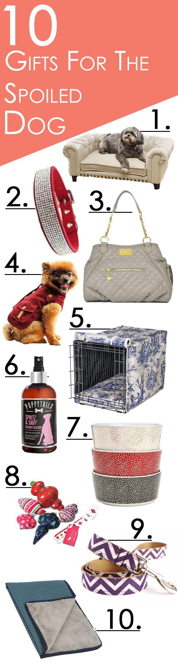 best little samson images on pinterest dog treats dog cat and