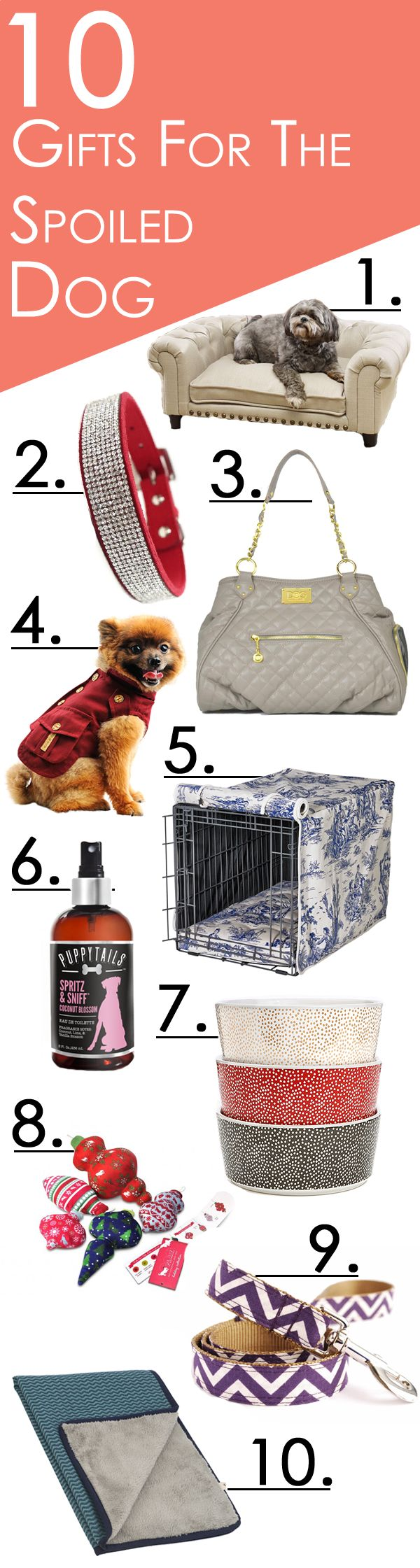 Spoil your dog even more with our selection of fashionable dog apparel, carriers, collars and more.