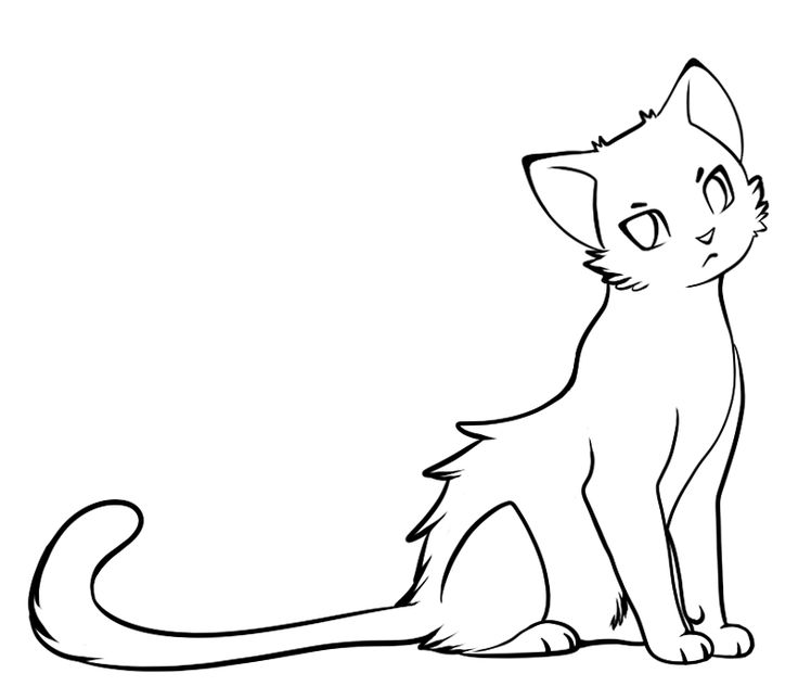 The 25+ best Simple cat drawing ideas on Pinterest   Anime cat ...