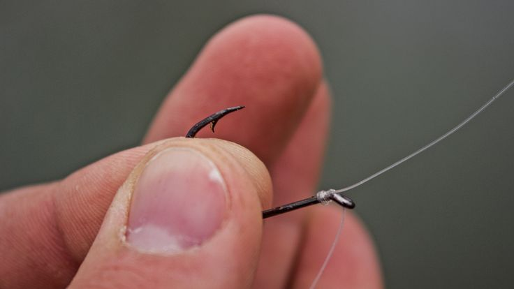 Tying a Snell Knot for Drop Shot Rigs