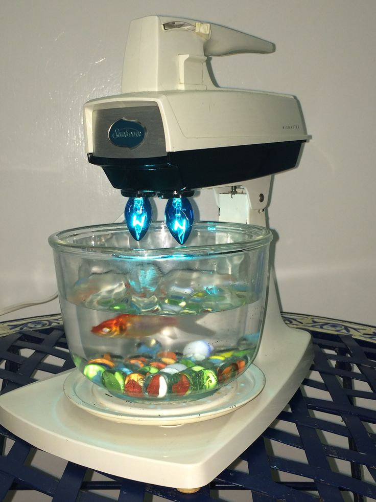 17 best upcycled kitchen appliances lamp and aquariums for Cooking fish in dishwasher