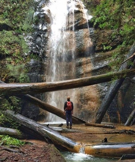 Hike Big Basin Redwoods State Park near Santa Cruz!