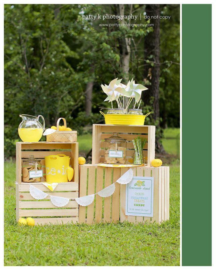 Summer Minis 2012 | Lemonade Stand | Patty K Photography