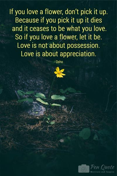 If you love a flower, don't pick it up. Because if you pick it up it dies and it ceases to be what you love. So if you love a flower, let it be. Love is not about possession. Love is about appreciation. FREE DOWNLOADS. www,penquote.com