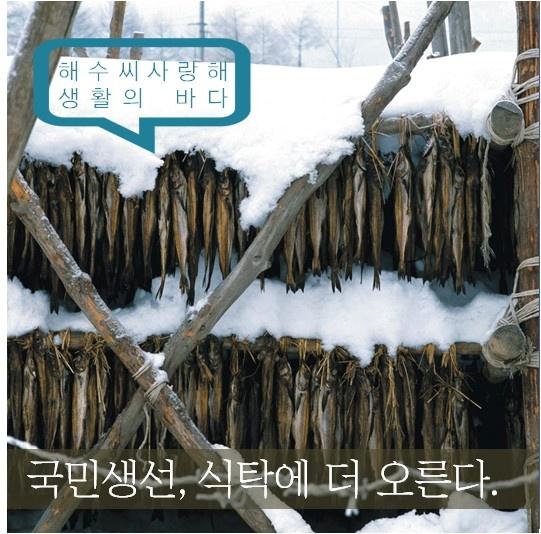 [블로그]국민생선 고등어와 명태 가격 더 내린다 http://blog.naver.com/koreamof/120189945049